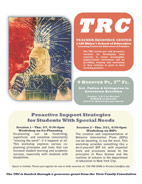 LIU Brooklyn TRC Support Strategies