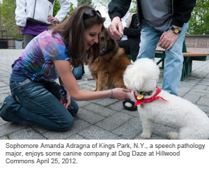 Sophomore Amanda Adragna of Kings Park, N.Y., a speech pathology major, enjoys some canine company at Dog Daze at Hillwood Commons April 25, 2012.