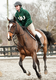 Riding Center at LIU Post to Host Equestrian Zone Competition