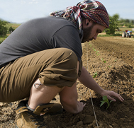 Student Planting Crops in Field
