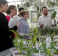 Students in Miracle-Gro Greenhouse