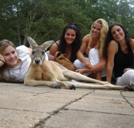 Study Abroad students with kangaroo